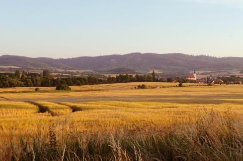 Spätsommerliche Felder