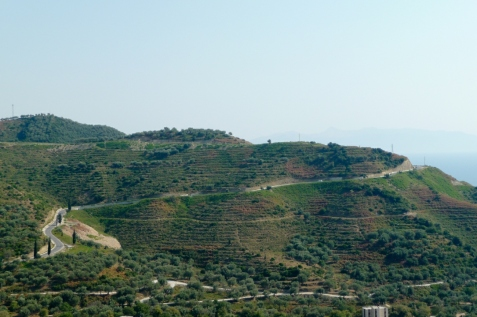 Küstenstrasse zwischen Shën Vasil und Palasë