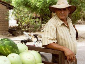 Melonenverkäufer