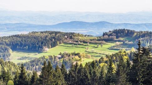 Ausblick auf die Alpen