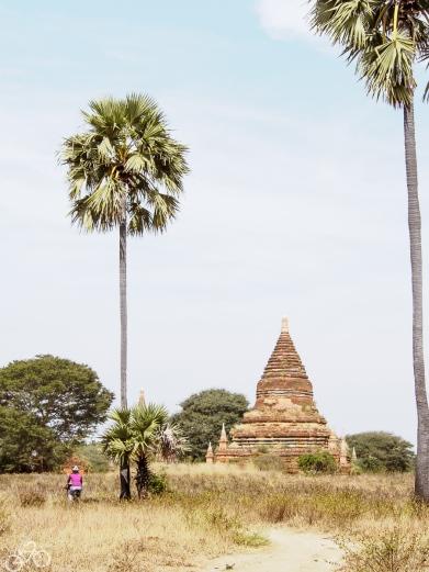 Myanmar_1619_web