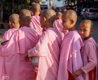 Junge Mönchinen