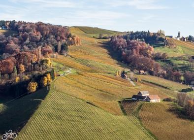 Tour in die Südsteiermark am Anfang November.