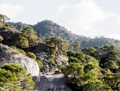 Die schönste Strecka war zwischen Dílar und Niguelas. / Nejhezčí cesta byla mezi Dílar a Niguelas.