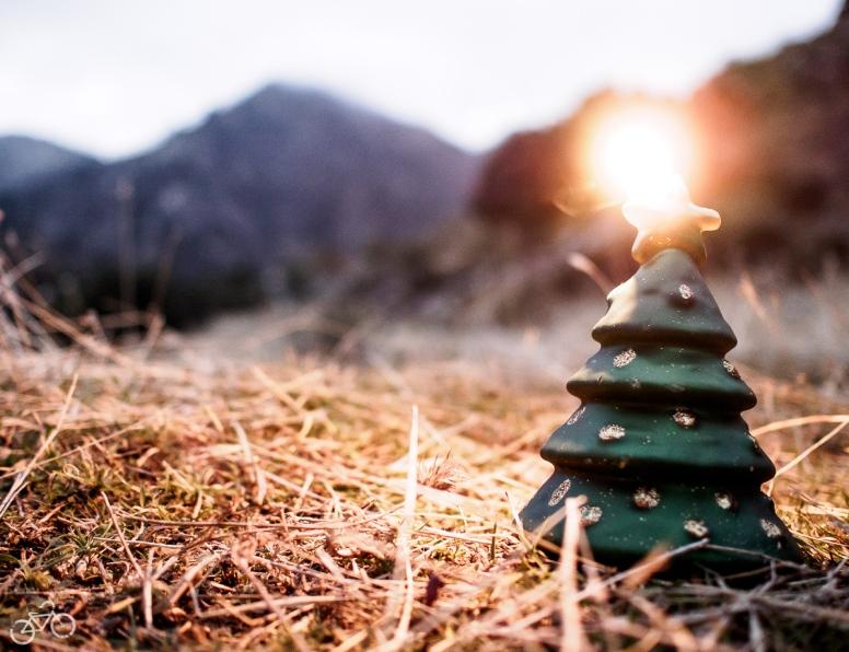 Unser Weihnachtsbaum / Náš vánoční stromek