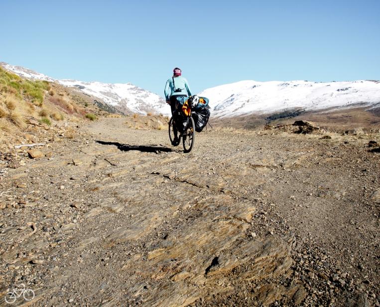 Transnevada biketrail