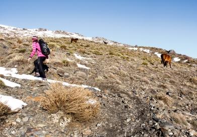 Diesen Weg haben wir unterschätzt. Im Winter ist das Gebirge ziemlich wild und kann gefährlich sein. Den Muhalcen (3482m) haben wir am Ende nicht erreicht. / Tuto cestu jsme podcenili. V zimě je toto pohoří poměrně divoké a může být nebezpečné. Muhalcén (3482m) jsme nedobyli.