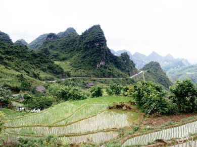 Vietnam 2017