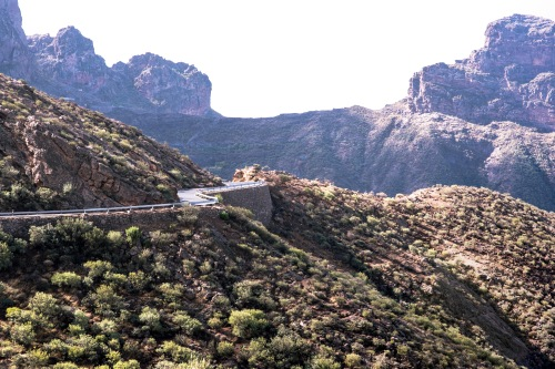 Gran Canaria_Teneriffa_JK_Auswahl_033_MLK_7533